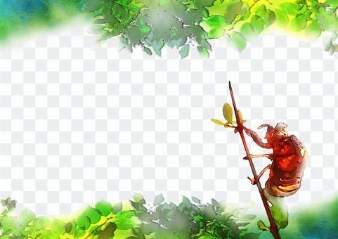 蝉(抜け殻)イラスト(水彩画風)夏の木