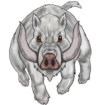 Giant white boar boss monster
