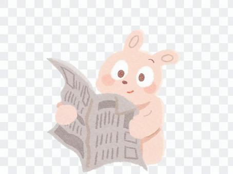 一隻兔子,看報紙的插圖