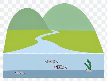 A river where fish live