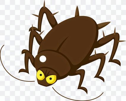 ゴキブリ 害虫