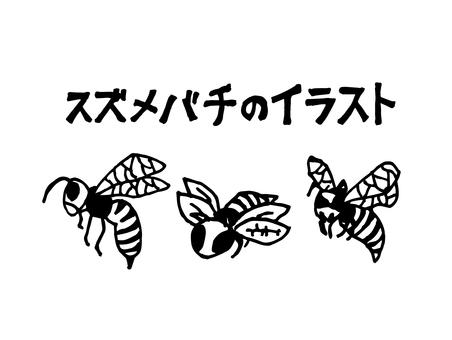 Illustration of wasp