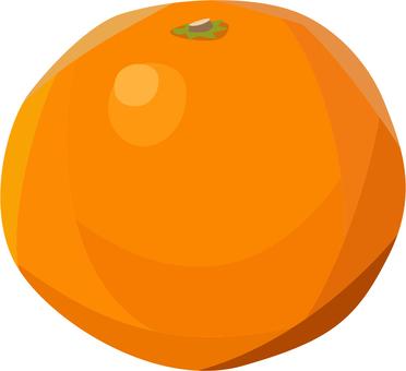 橙色 / 矢量水果
