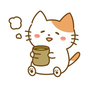 녹차를 마시고 넌더리 나하는 고양이