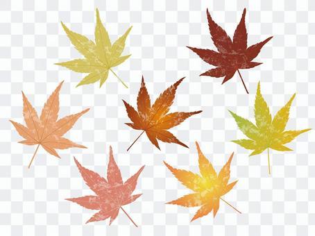 가을 잎 1