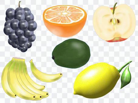 各種水果插圖集①