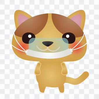 茶貓鼠標盾
