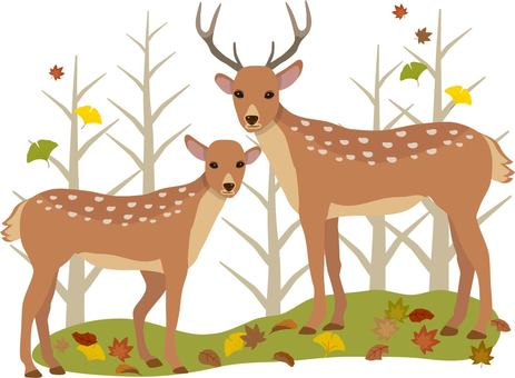 Deer autumn background with trees