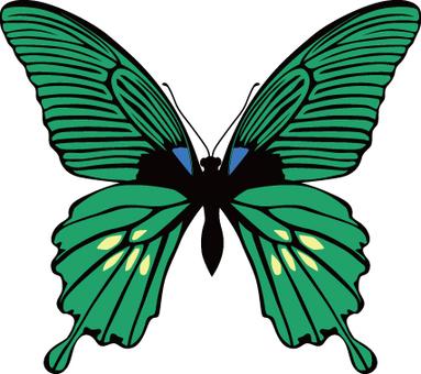 蝴蝶(綠色)