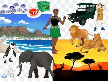 南非的圖像插圖