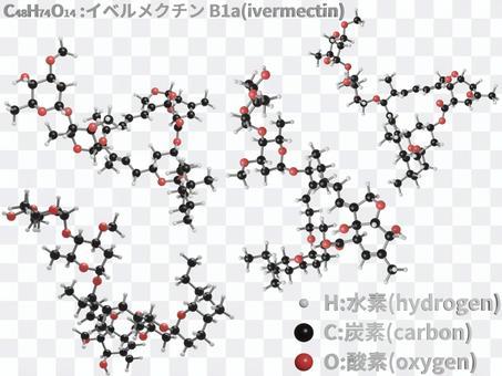 伊維菌素B1a的分子模型