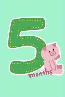 ポップなマンスリーカード 5ヶ月