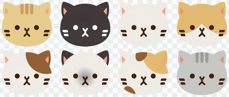 A cat assortment