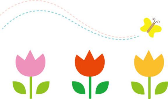 鬱金香和蝴蝶