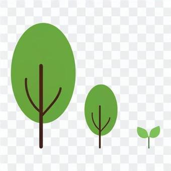 樹木生長的形象