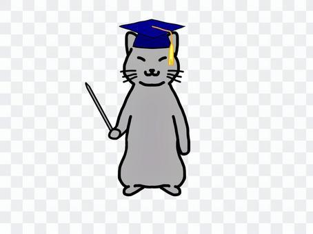 灰猫 学者