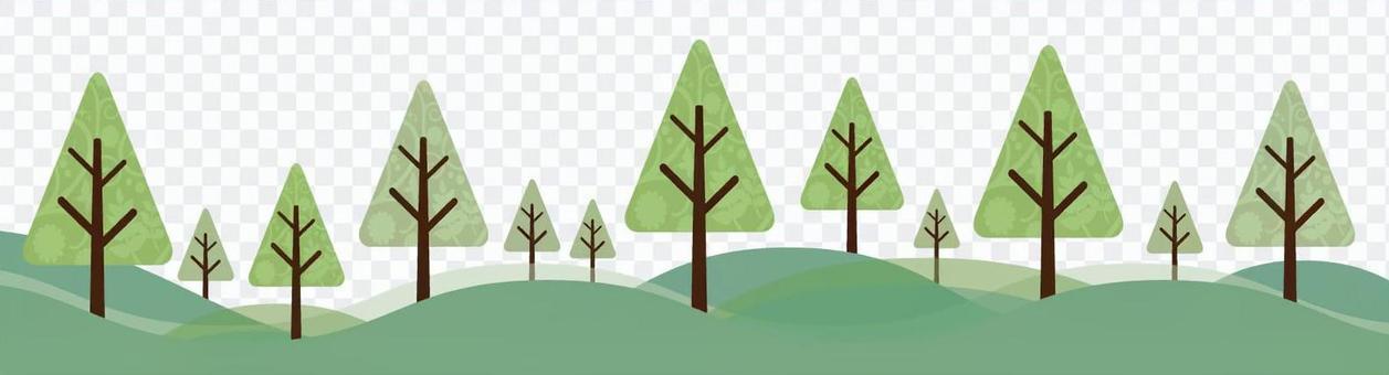 一個神秘的森林