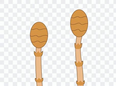 Tsukushimbo 4