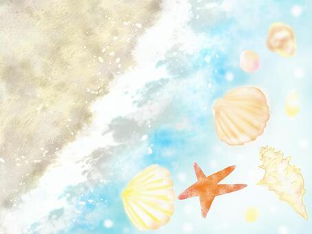 Seashell and sea