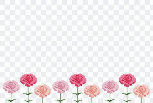 康乃馨12-1輪(明信片尺寸)