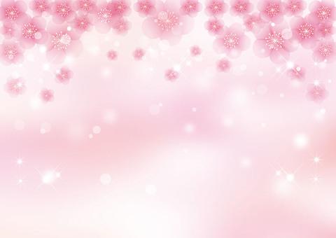 李子_桃紅色背景