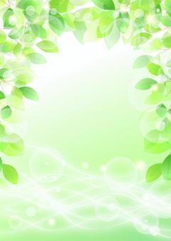 新鮮的綠色和自來水的閃光背景垂直