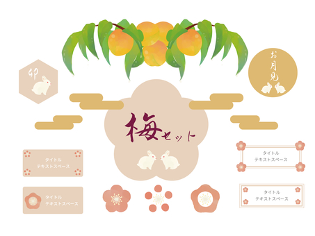 Light-colored plum set