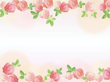 Rose Flower Flower