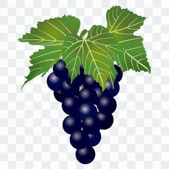 美味的葡萄2
