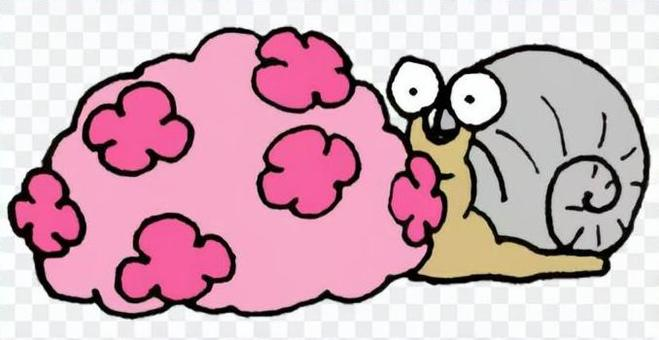 繡球花和一隻蝸牛