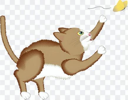 猫 ペット 茶 蝶々 捕まえる