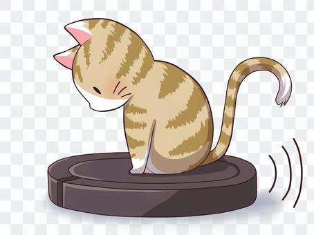 騎吸塵器的貓(老虎)