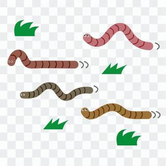 지렁이의 행진