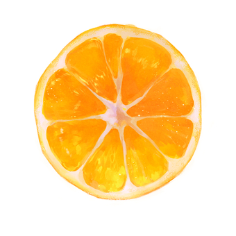 Mandarin orange (cross section)