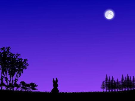 中秋节的月亮和兔子