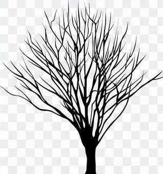 Dead tree _ silhouette