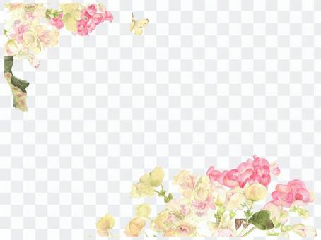 Letter background 17 - Begonia