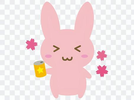 Usagi-yama
