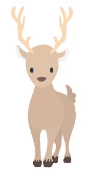 Reindeer (front)