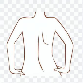 線描圖的一個裸體女人的背