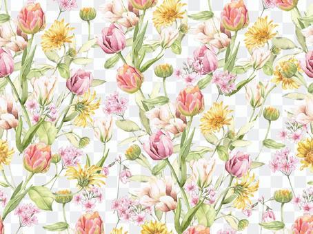 꽃 테두리 353 자 봄 튤립 꽃 테두리