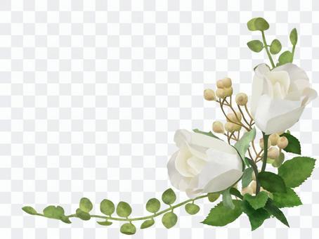薔薇 クラシック フレーム