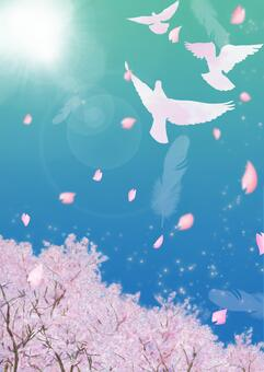 비둘기가 날고 창공 벚꽃