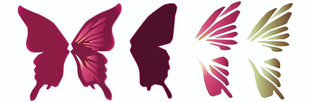 蝴蝶的羽毛集
