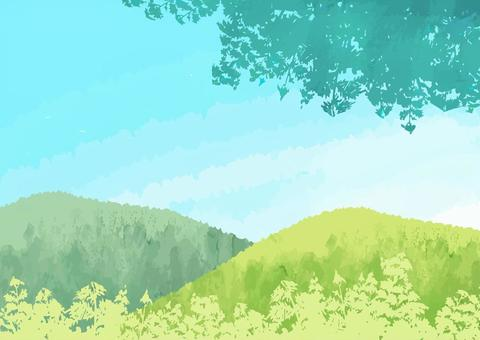 Sky and green landscape