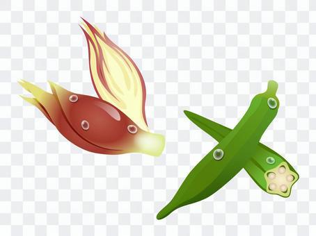 黃秋葵和姜