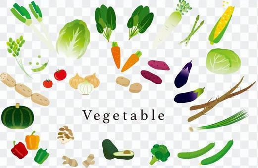 各種各樣的蔬菜