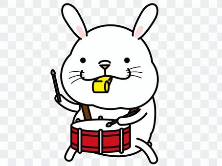 美國的鼓隊和橫笛隊