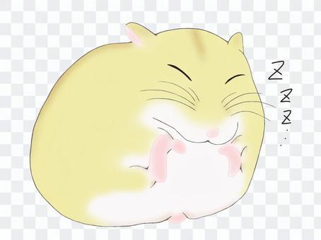 昏昏欲睡的倉鼠(星期五)
