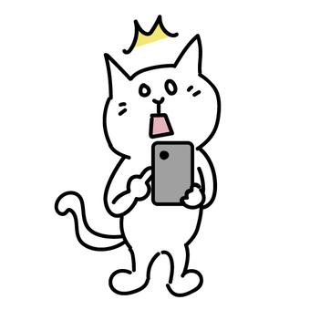 驚訝地看到智能手機的貓